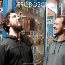 Probosci @La Cantine de Belleville (Paris) january 11th 2014